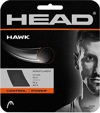 head-hawk.jpg